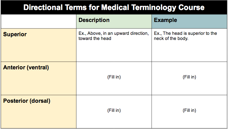 Medical terminology course