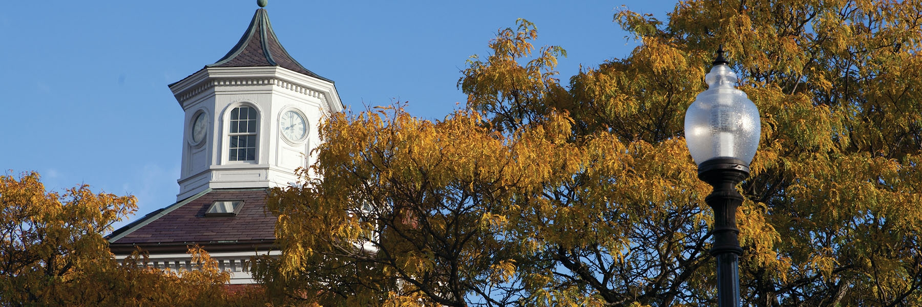 photo shows white clock tower on campus peeking above some yellow trees