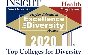 Excellence in Diversity 2020 logo is a gold diamond with red and blue triangles