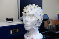 Image of eeg bubble net