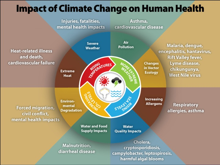 Graphic of Impact of Climate Change on Human Health